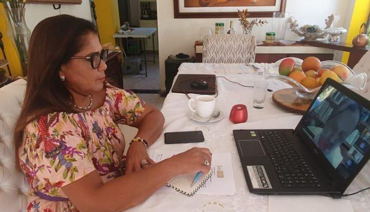 En histórica sesión virtual del Congreso, Elizabeth Jay-Pang Díaz abogó por  la salud, la economía y el bienestar de todos los isleños. - The  Archipielago Press